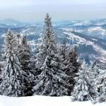白馬の冬はスキーだけじゃない、それ以外の遊びをご紹介します(雪遊びとインドア編)。