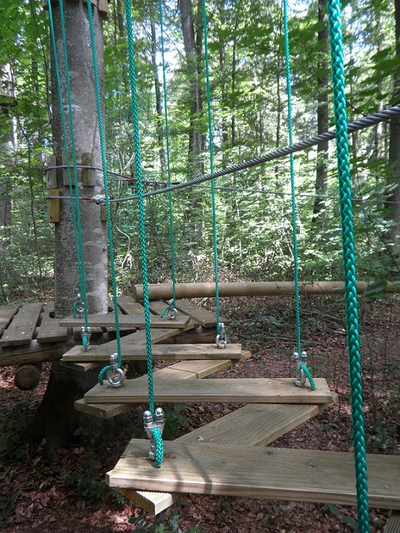 1-4 climbing-forest-389752_1280