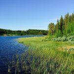 スウェーデン旅行のおすすめ時期はいつ? 四季それぞれの特徴を説明