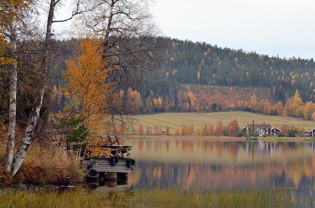 7-5. autumn-456365_640