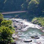 有吉佐和子 紀ノ川のあらすじ│たくましく生きる女たちの物語